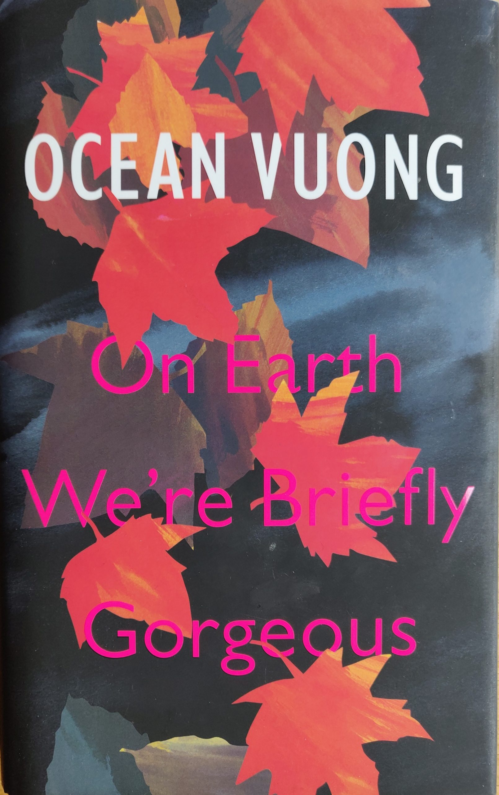 On Earth We're Briefly Gorgeous - Ocean Vuong (2019)